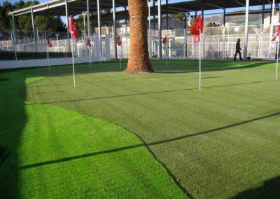 Pati Green 9